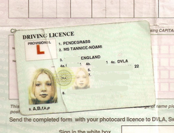 Driving License for my first car