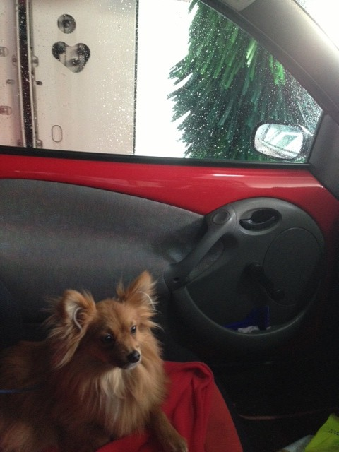 Massimo wasn't keen on the car wash